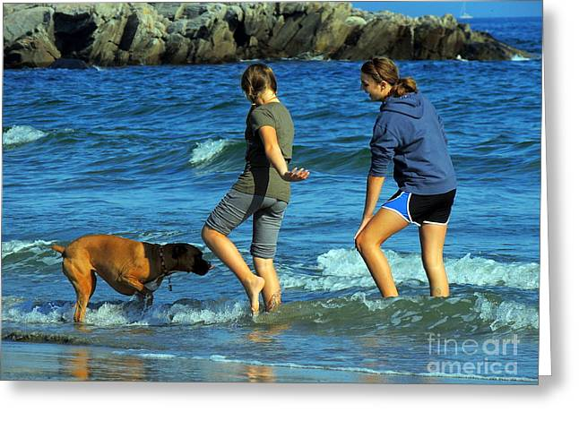 Maine Beach Greeting Cards - Summer Fun Greeting Card by Marcia Lee Jones