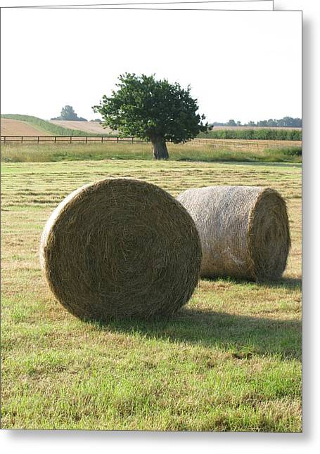 Haybale Greeting Cards - Summer Greeting Card by Maria Joy