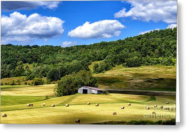 Field. Cloud Greeting Cards - Summer Morning Hay Field Greeting Card by Thomas R Fletcher