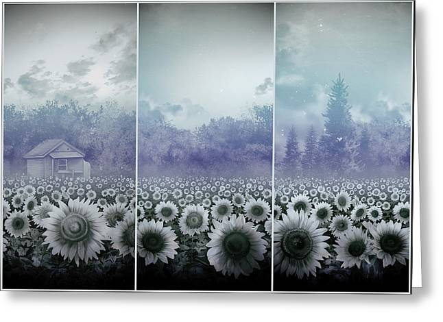 Sunflowers Triptych Greeting Card by Bekim Art