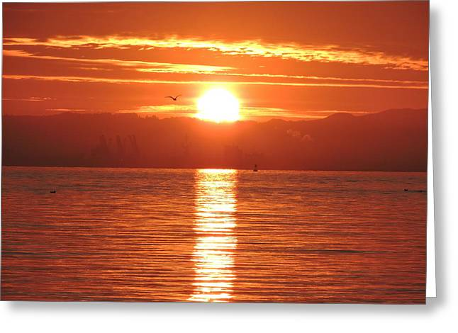 Sunrise Ceramics Greeting Cards - Sunrise Over The Bay Greeting Card by Clint  Saunders