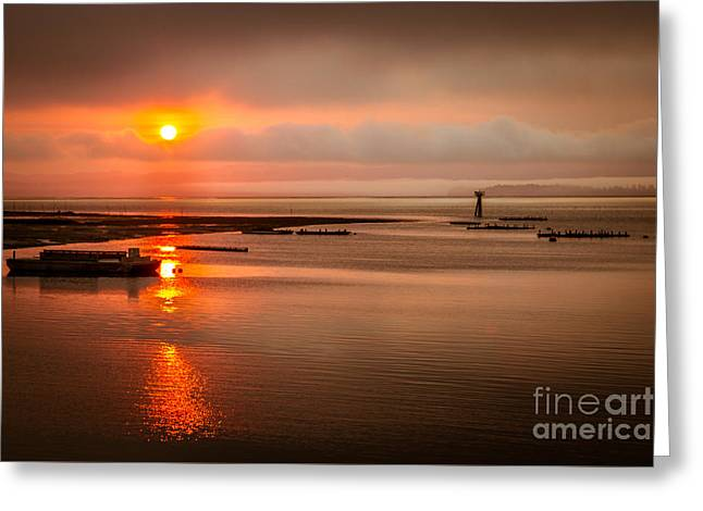 Wildlife Refuge. Greeting Cards - Sunrise Reflections Greeting Card by Robert Bales