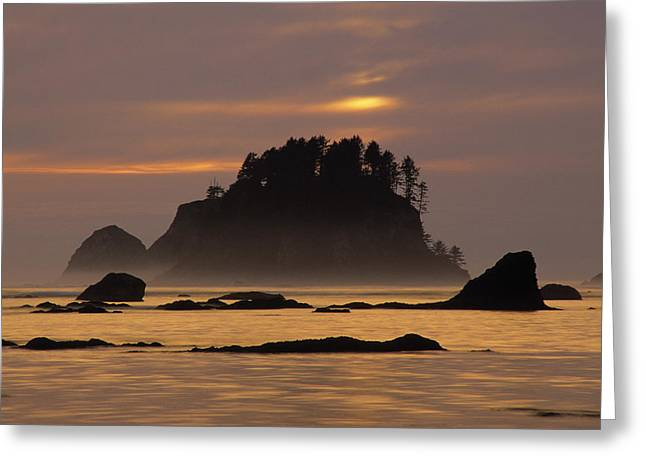 Out-of-door Greeting Cards - Sunset At Olympic National Park, Cape Greeting Card by Ron Watts