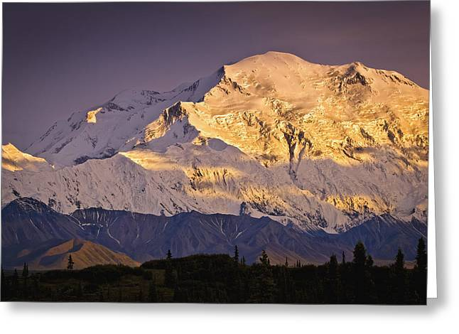 Northside Greeting Cards - Sunset Glow On Mt. Mckinley, Denali Greeting Card by Sunny Awazuhara- Reed