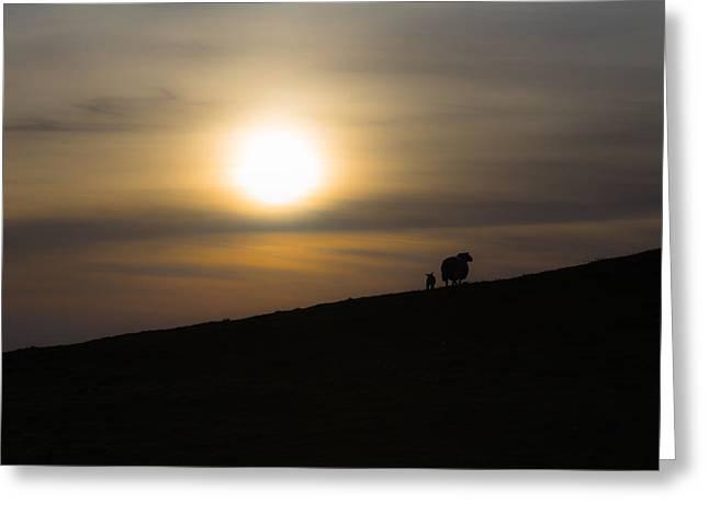 Warwickshire Greeting Cards - Sunset watchers Greeting Card by Chris Fletcher