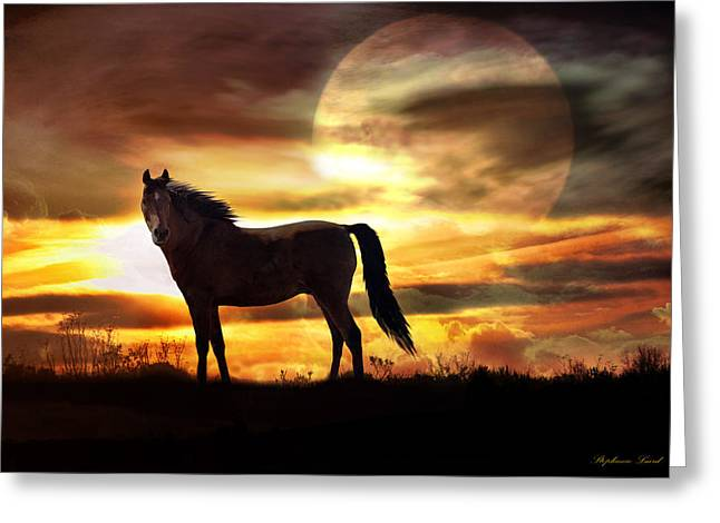 Sky Lovers Art Greeting Cards - Sunstorm Greeting Card by Stephanie Laird