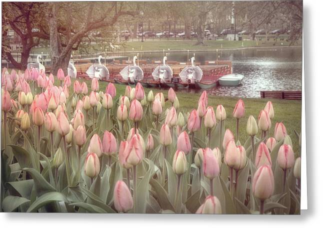 Spring Scenes Greeting Cards - Swan Boats and Tulips - Boston Public Garden Greeting Card by Joann Vitali