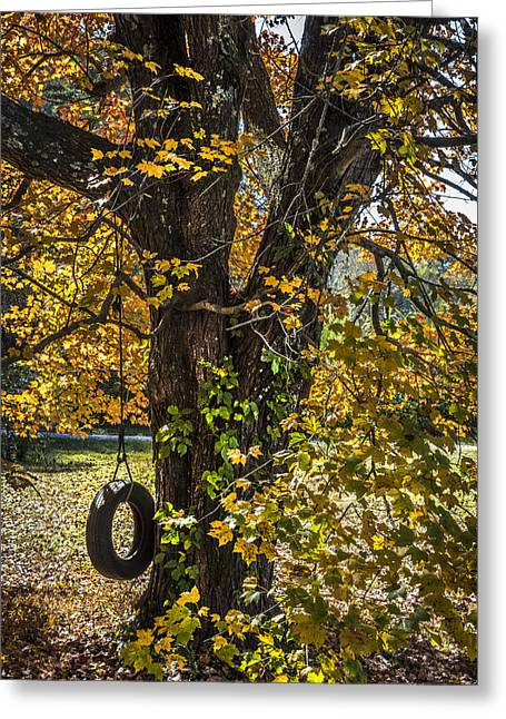 Tennessee Barn Greeting Cards - Swing in the Maple Tree Greeting Card by Debra and Dave Vanderlaan