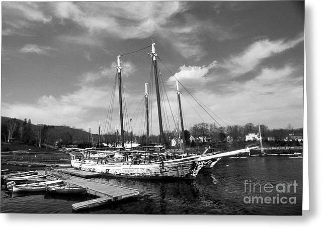 Sailboat Images Greeting Cards - Tall Ship Grace Bailey Greeting Card by Skip Willits