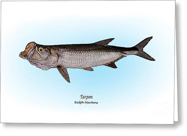 Tarpon Greeting Card by Ralph Martens
