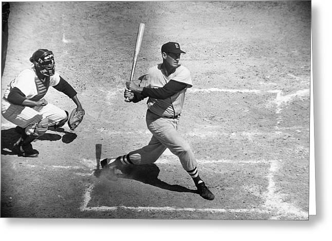 St Petersburg Florida Greeting Cards - Ted Williams (1918-2002) Greeting Card by Granger