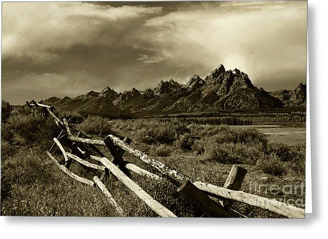 Tetons And Fence Greeting Card by Timothy Johnson