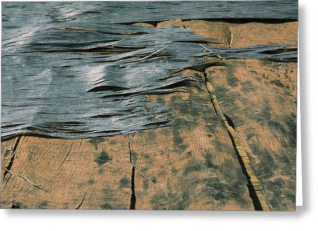 Ply Greeting Cards - Texture Greeting Card by Ric Aldrich