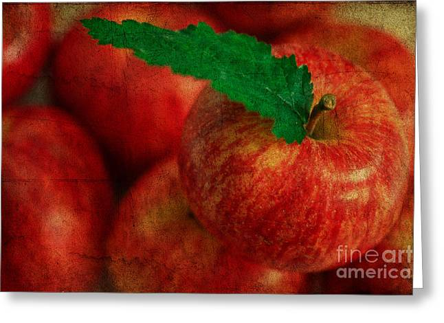 Harvest Art Greeting Cards - Textured Apples Greeting Card by Tracy  Hall