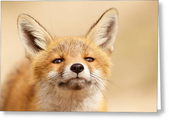 Photo . Portrait Greeting Cards - That Foxy Face Greeting Card by Roeselien Raimond