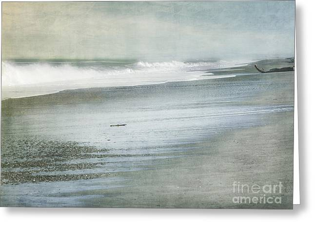 Dark Gray Greeting Cards - The Beach Greeting Card by Linde Townsend