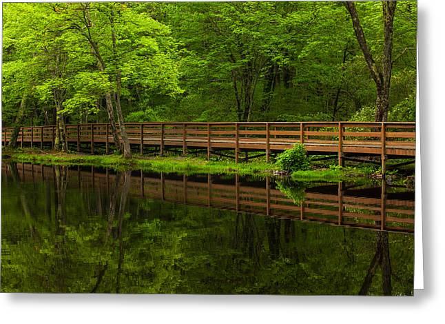 Pond In Park Greeting Cards - The Bridge Greeting Card by Karol  Livote
