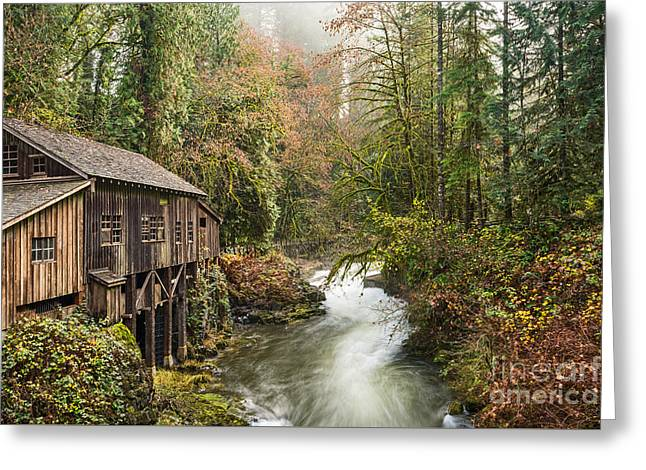 The Cedar Creek Grist Mill In Washington State. Greeting Card by Jamie Pham