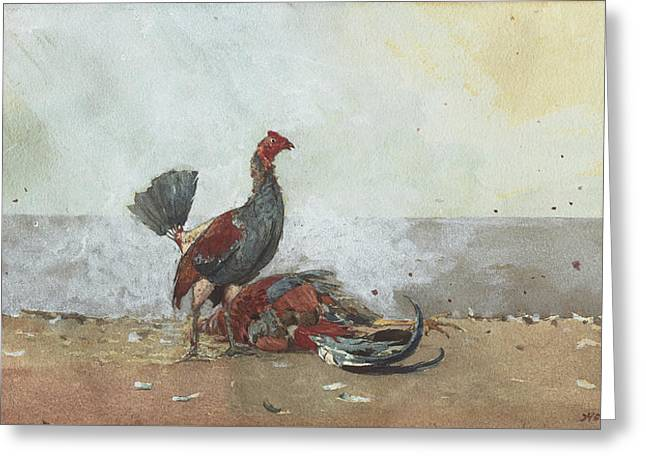 The Cock Fight Greeting Card by Winslow Homer