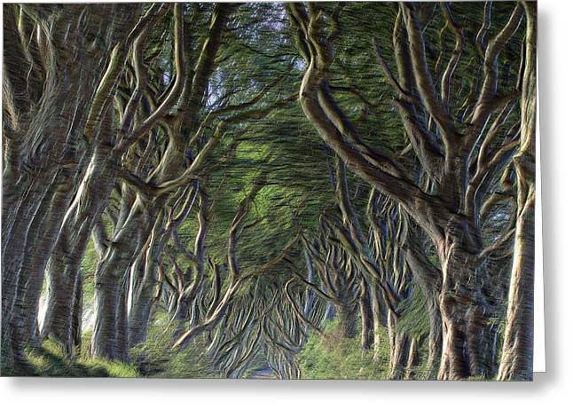 The Dark Hedges Greeting Cards - The Dark Hegdes Greeting Card by Mark Hinds