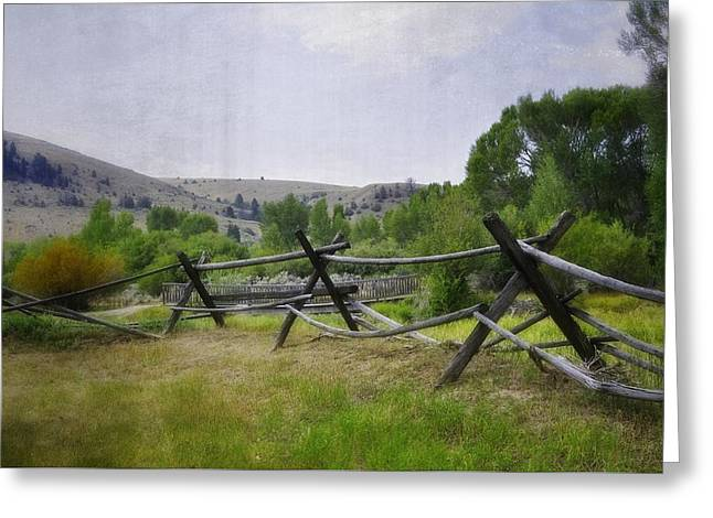 ist Photographs Greeting Cards - The Fence Line Greeting Card by Image Takers Photography LLC - Laura Morgan
