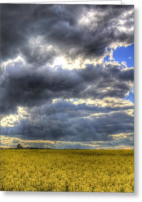 Farmers Field Greeting Cards - The Impending Storm Greeting Card by David Pyatt