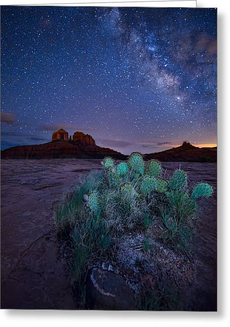 Cathedral Rock Pyrography Greeting Cards - The Impractical Cactus Greeting Card by Larry Pollock