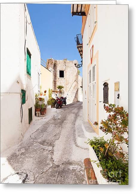 Inseln Greeting Cards - The italian island Ponza Greeting Card by Wolfgang Steiner