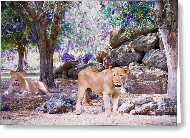 Lioness Greeting Cards - The Lions Greeting Card by Judy Kay