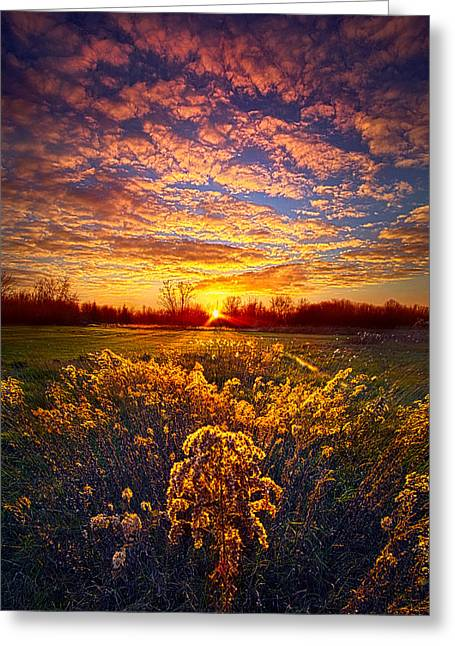 The Love That Lights My Way Greeting Card by Phil Koch