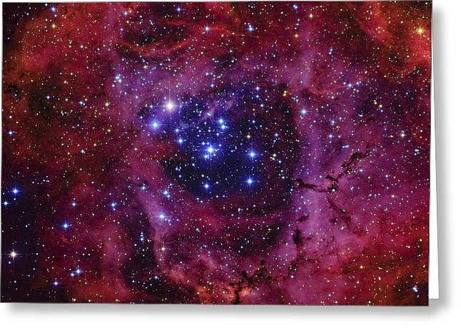 Twinkle Greeting Cards - The Rosette Nebula Greeting Card by Roberto Colombari
