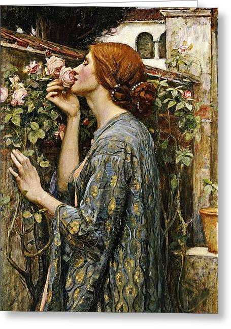 Souls Greeting Cards - The Soul of the Rose Greeting Card by John William Waterhouse