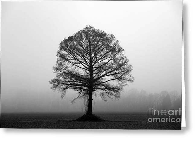 The Tree Greeting Card by Amanda Barcon