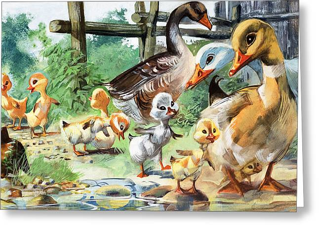Recently Sold -  - Mother Goose Greeting Cards - The Ugly Duckling Greeting Card by English School