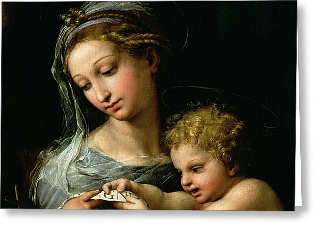 The Virgin of the Rose Greeting Card by Raphael