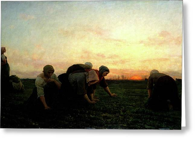 The Weeders Greeting Card by Jules Breton