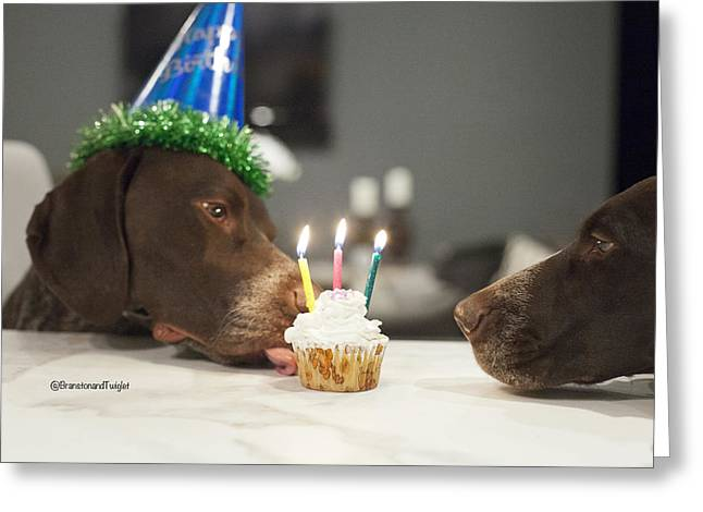 Three Today Greeting Card by Kimberly Petts