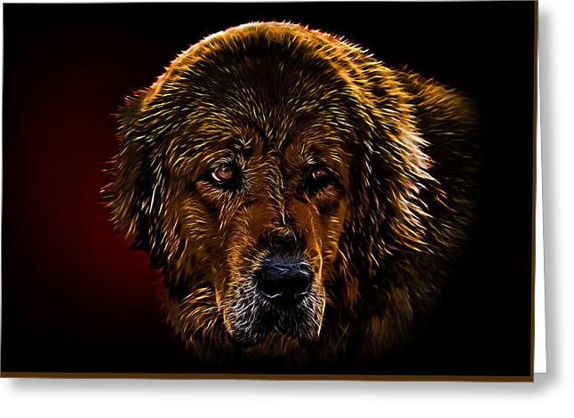 Besides Greeting Cards - Tibetan mastiff Greeting Card by Denis Bajan