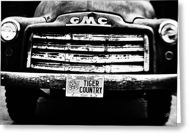 Tiger Country Greeting Card by Scott Pellegrin