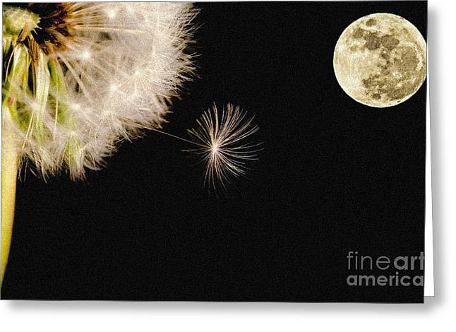 Initiative Greeting Cards - To Moon and Back Greeting Card by Celestial Images