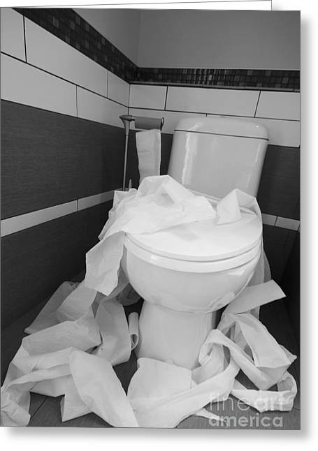 Toilet Bowl Greeting Cards - Toilet Paper Strewn in a Bathroom Greeting Card by Marlene Ford