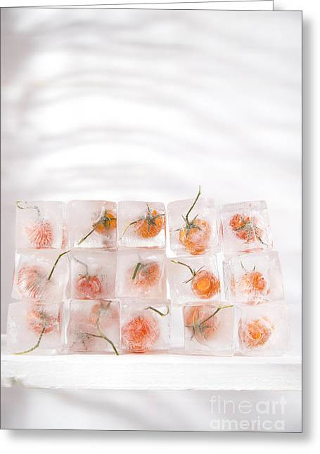 Sorbet Greeting Cards - Tomato frozen Greeting Card by Marco Guidi