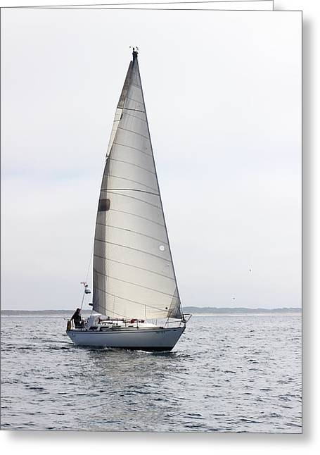 Sailboat Ocean Greeting Cards - Touche, Oct. 2014 Greeting Card by Larry  Daeumler