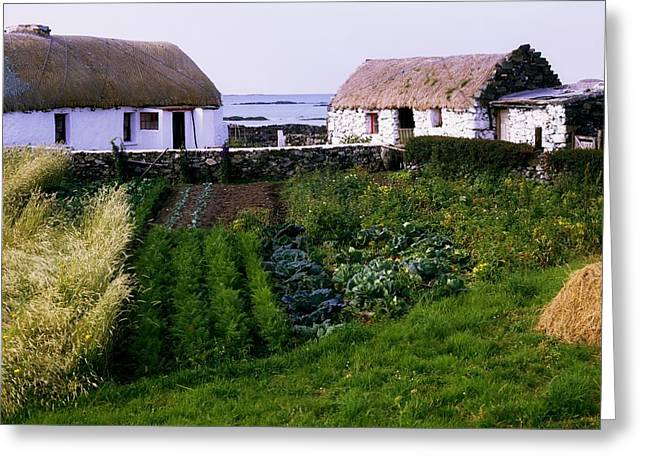 Connaught Greeting Cards - Traditional Cottages, Co Galway, Ireland Greeting Card by The Irish Image Collection
