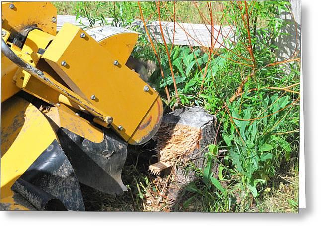 Saw Greeting Cards - Tree stump machine. Greeting Card by Oscar Williams