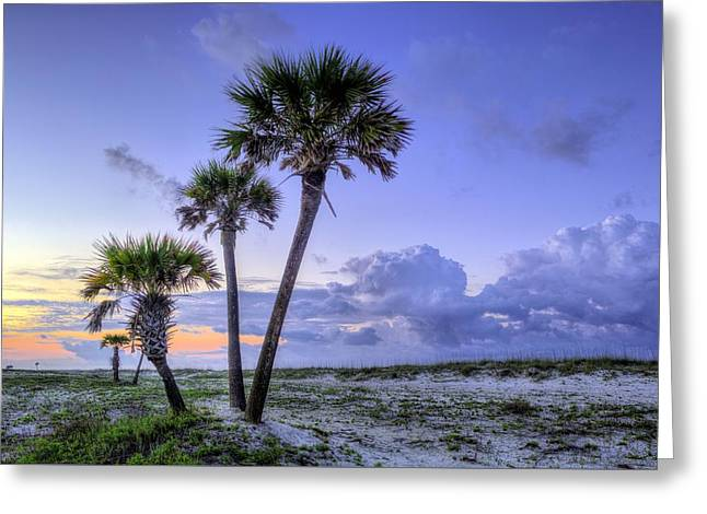 Florida Panhandle Greeting Cards - Tres Greeting Card by JC Findley