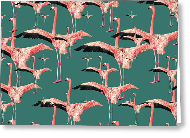Tropical Flamingo  Greeting Card by Mark Ashkenazi