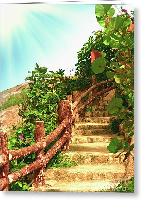Wooden Stairs Greeting Cards - Tropical garden Greeting Card by MotHaiBaPhoto Prints