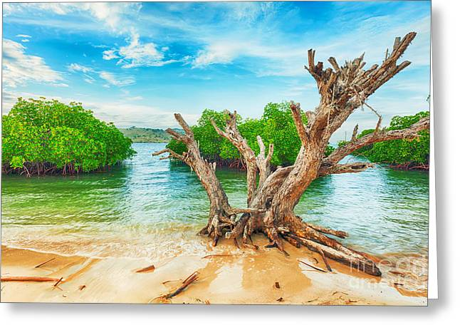 Tropical Island Greeting Cards - Tropical island Greeting Card by MotHaiBaPhoto Prints