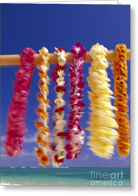 Ocean Art Photos Greeting Cards - Tropical Leis Greeting Card by Dana Edmunds - Printscapes